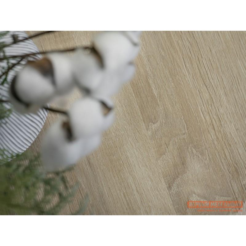 Журнальный столик  BeautyStyle 7 Дуб сонома / Шимо (фото 8)