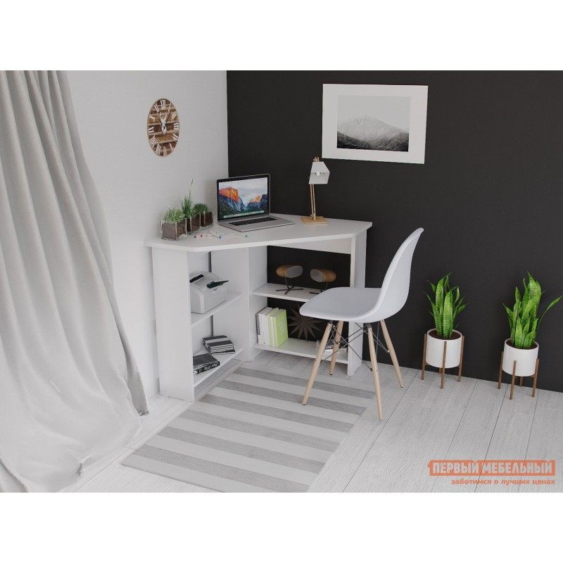 Письменный стол  Стол СТМ-1 Белый (фото 5)