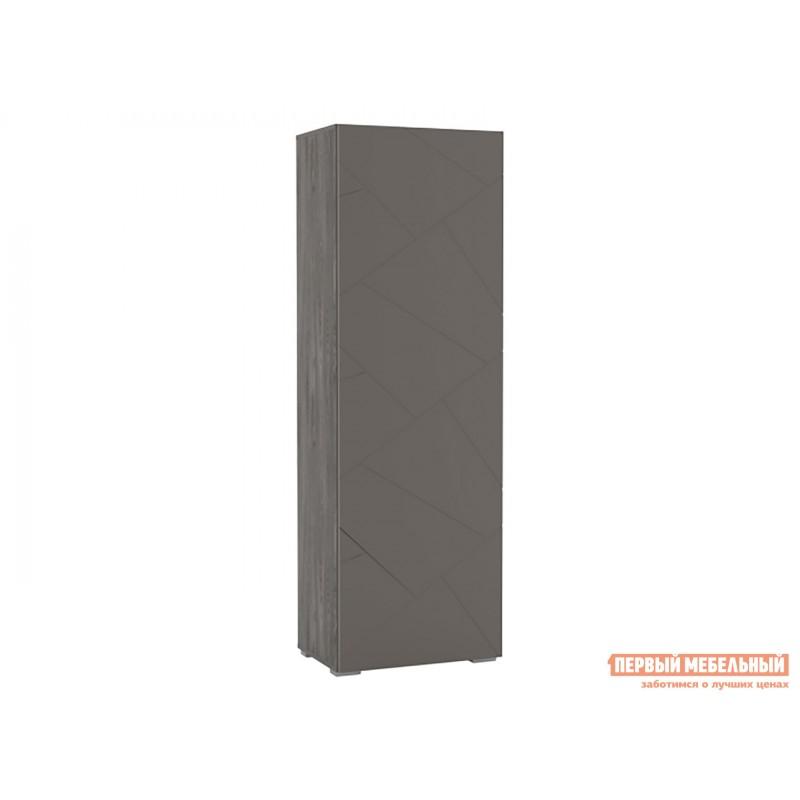 Распашной шкаф  Шкаф для одежды Суммит 011.18 Ясень анкор темный / Софт графит